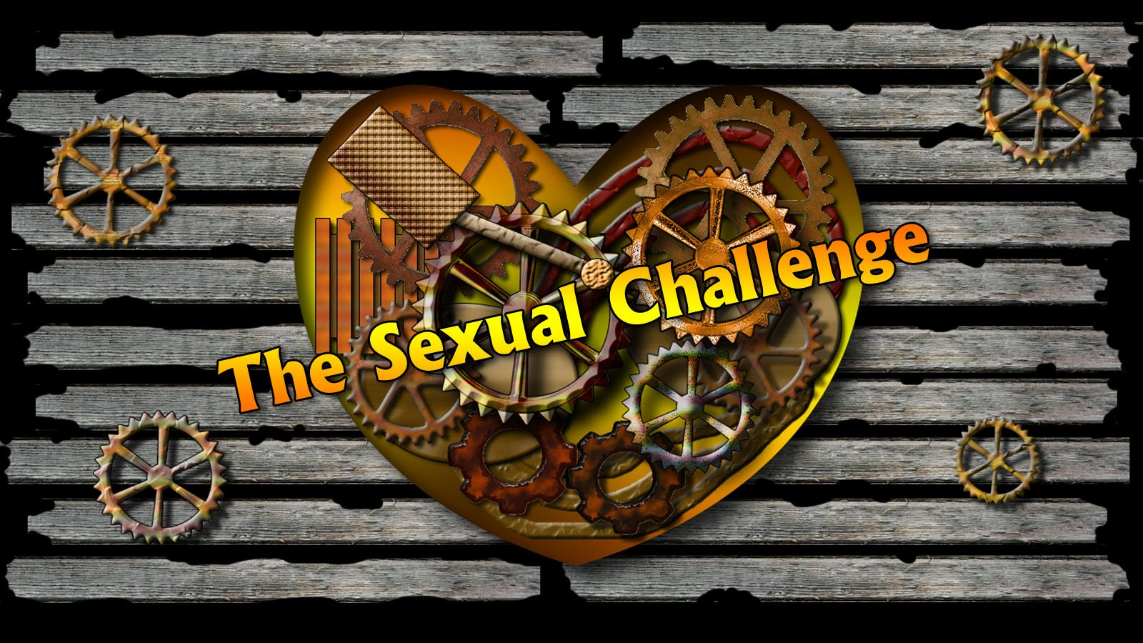 The Sexual Challenge – Reigniting The Passion In My Marriage